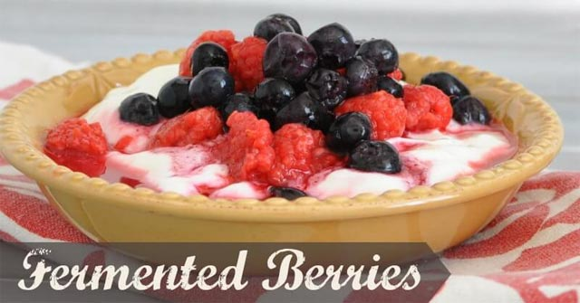 Fermented Honey Berries